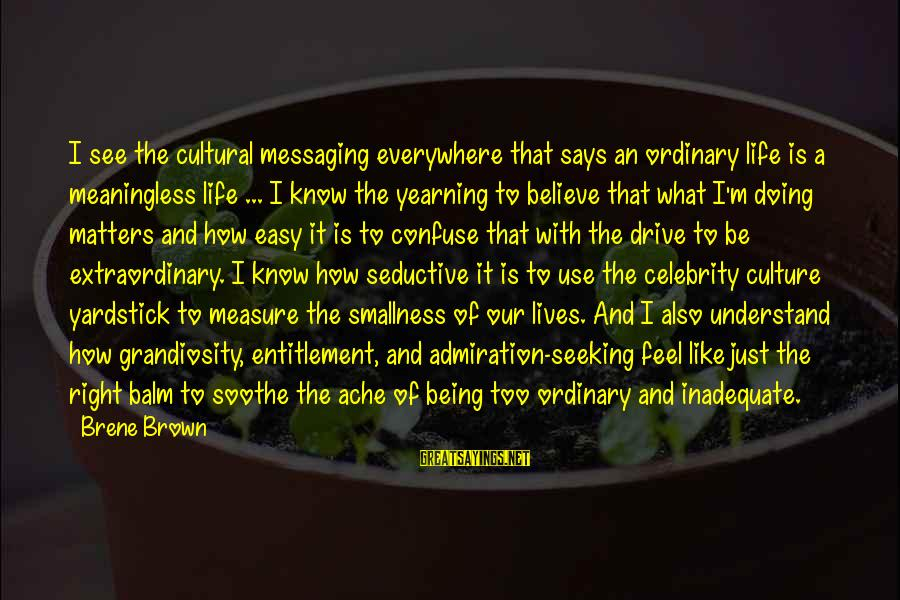 Culture Of Narcissism Sayings By Brene Brown: I see the cultural messaging everywhere that says an ordinary life is a meaningless life