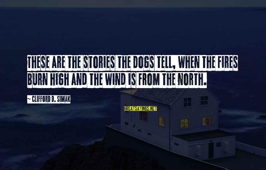 Cute Astronomy Sayings By Clifford D. Simak: These are the stories the Dogs tell, when the fires burn high and the wind