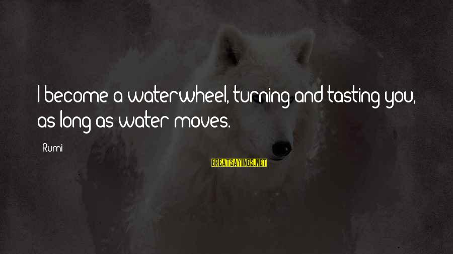 Cute Moving Sayings By Rumi: I become a waterwheel, turning and tasting you, as long as water moves.