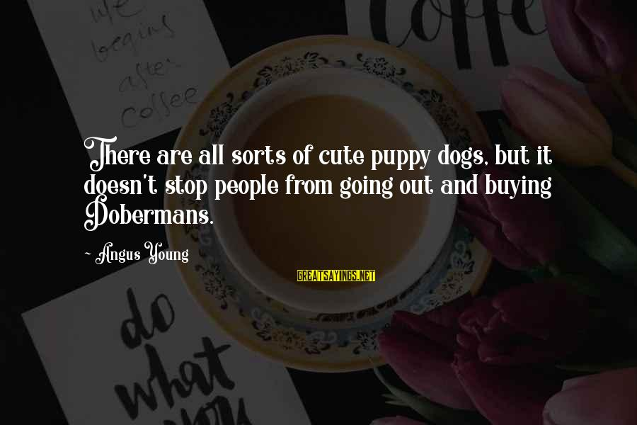 Cute Pet Sayings By Angus Young: There are all sorts of cute puppy dogs, but it doesn't stop people from going