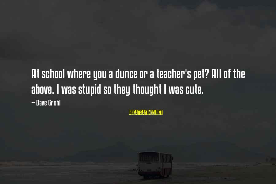 Cute Pet Sayings By Dave Grohl: At school where you a dunce or a teacher's pet? All of the above. I