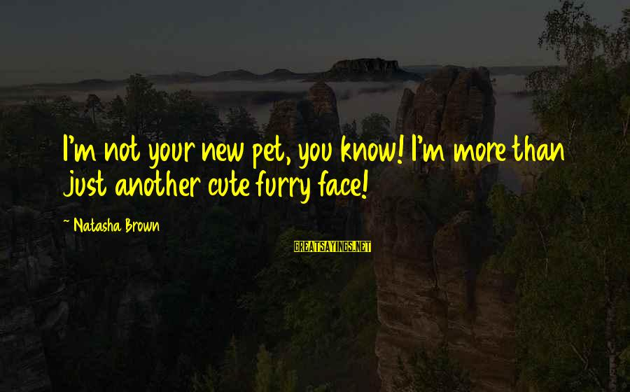 Cute Pet Sayings By Natasha Brown: I'm not your new pet, you know! I'm more than just another cute furry face!