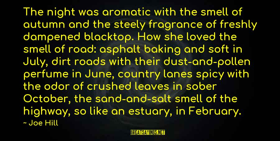 Cute Smiling Sayings By Joe Hill: The night was aromatic with the smell of autumn and the steely fragrance of freshly