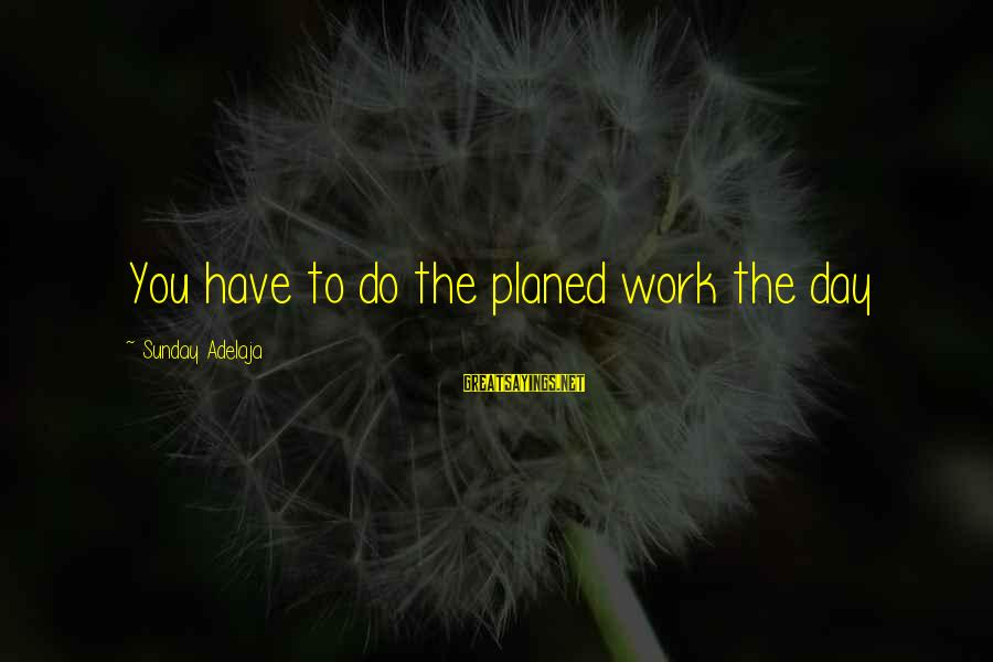 Daily Plan Sayings By Sunday Adelaja: You have to do the planed work the day