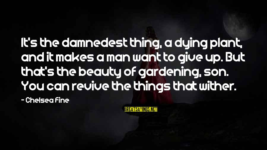 Damnedest Sayings By Chelsea Fine: It's the damnedest thing, a dying plant, and it makes a man want to give