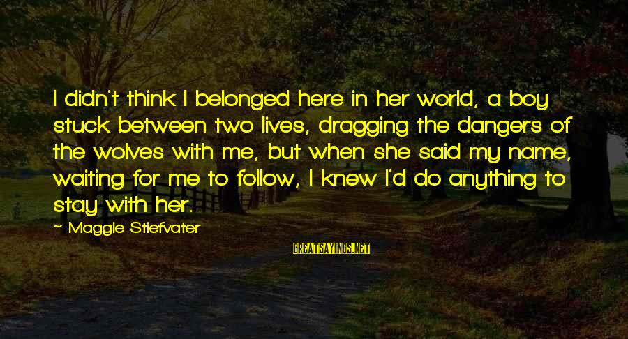 Dangers Of Sayings By Maggie Stiefvater: I didn't think I belonged here in her world, a boy stuck between two lives,