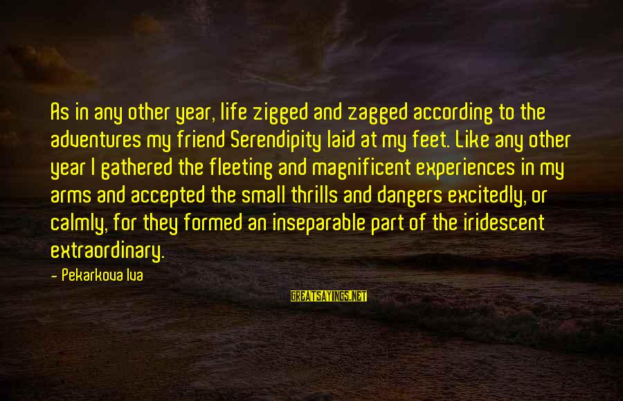 Dangers Of Sayings By Pekarkova Iva: As in any other year, life zigged and zagged according to the adventures my friend