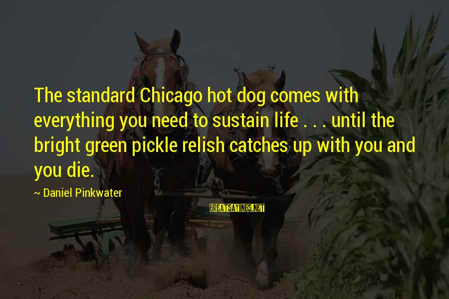Daniel Pinkwater Sayings By Daniel Pinkwater: The standard Chicago hot dog comes with everything you need to sustain life . .