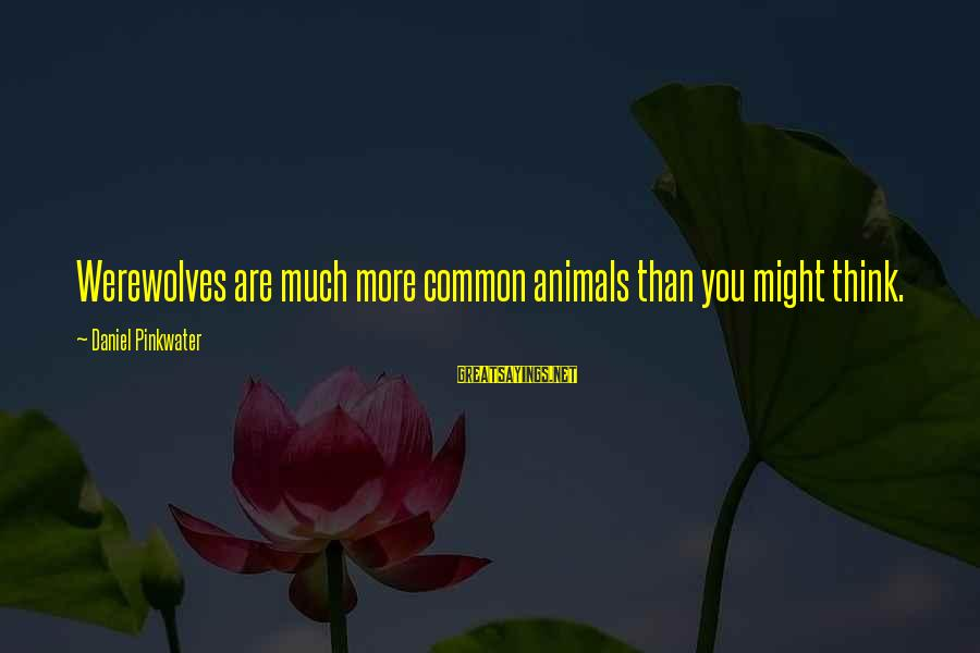 Daniel Pinkwater Sayings By Daniel Pinkwater: Werewolves are much more common animals than you might think.