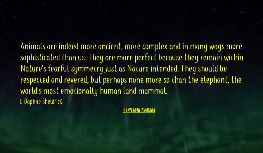 Daphne Sheldrick Sayings By Daphne Sheldrick: Animals are indeed more ancient, more complex and in many ways more sophisticated than us.