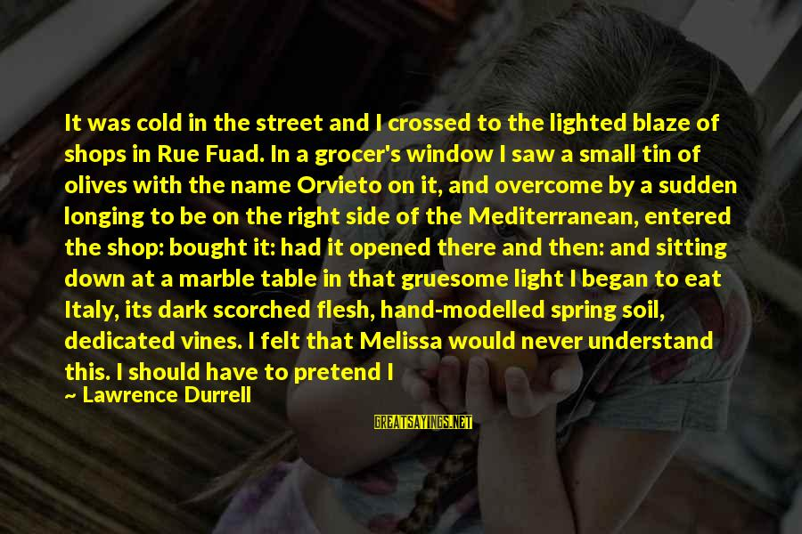 Dark Gruesome Sayings By Lawrence Durrell: It was cold in the street and I crossed to the lighted blaze of shops