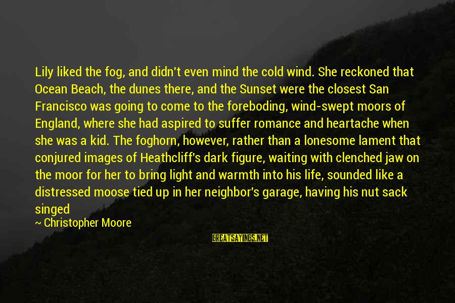 Dark Humor Sayings By Christopher Moore: Lily liked the fog, and didn't even mind the cold wind. She reckoned that Ocean