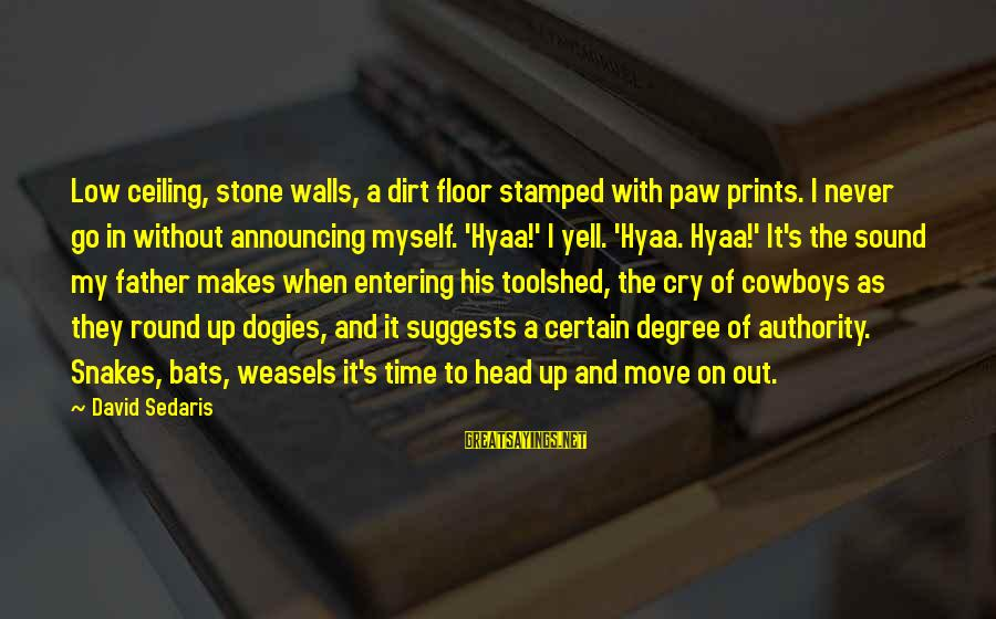 Dark Humor Sayings By David Sedaris: Low ceiling, stone walls, a dirt floor stamped with paw prints. I never go in