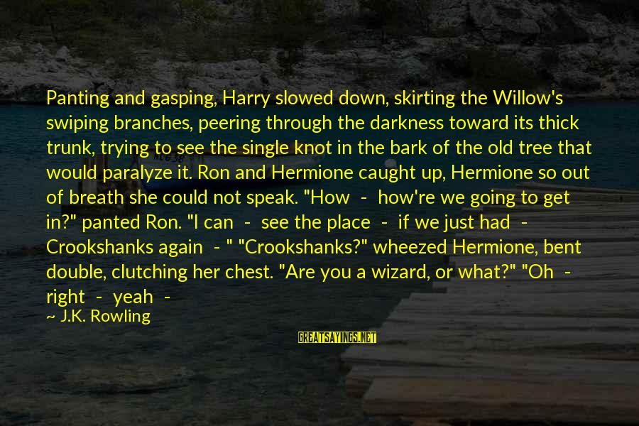 Darkness In Her Sayings By J.K. Rowling: Panting and gasping, Harry slowed down, skirting the Willow's swiping branches, peering through the darkness