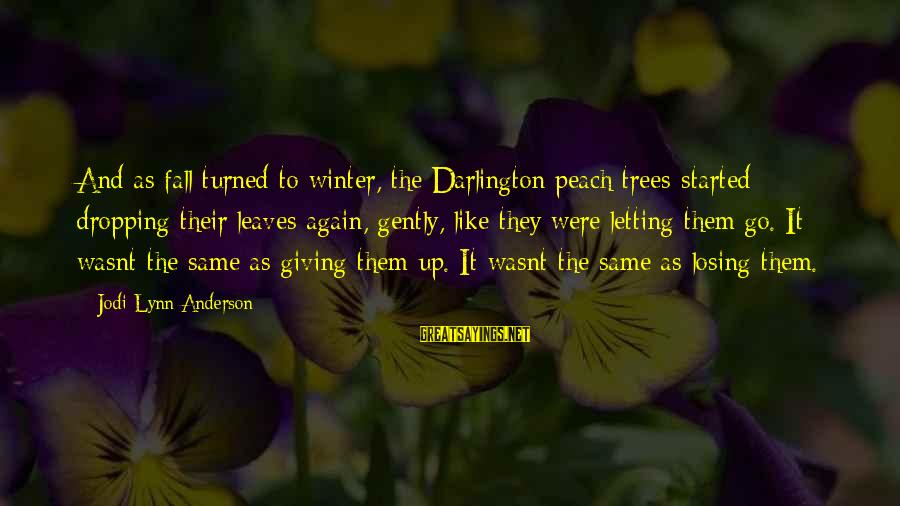 Darlington Sayings By Jodi Lynn Anderson: And as fall turned to winter, the Darlington peach trees started dropping their leaves again,