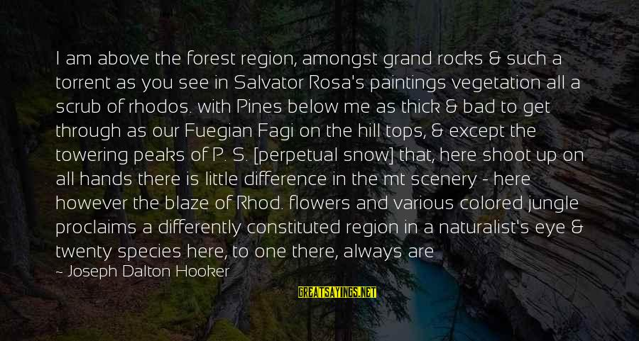 Darwin Species Sayings By Joseph Dalton Hooker: I am above the forest region, amongst grand rocks & such a torrent as you