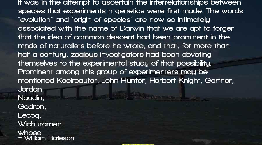 Darwin Species Sayings By William Bateson: It was in the attempt to ascertain the interrelationships between species that experiments n genetics