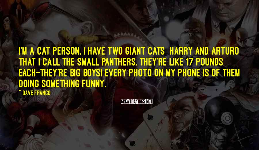 Dave Franco Sayings: I'm a cat person. I have two giant cats [Harry and Arturo] that I call