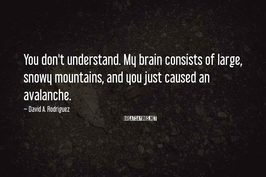 David A. Rodriguez Sayings: You don't understand. My brain consists of large, snowy mountains, and you just caused an