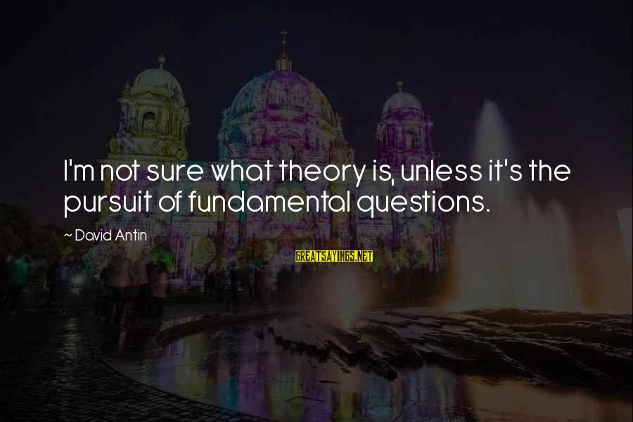 David Antin Sayings By David Antin: I'm not sure what theory is, unless it's the pursuit of fundamental questions.