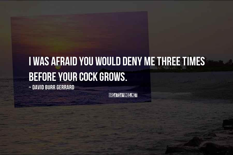 David Burr Gerrard Sayings: I was afraid you would deny me three times before your cock grows.