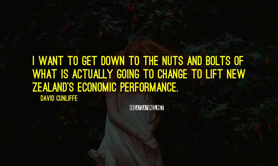 David Cunliffe Sayings: I want to get down to the nuts and bolts of what is actually going