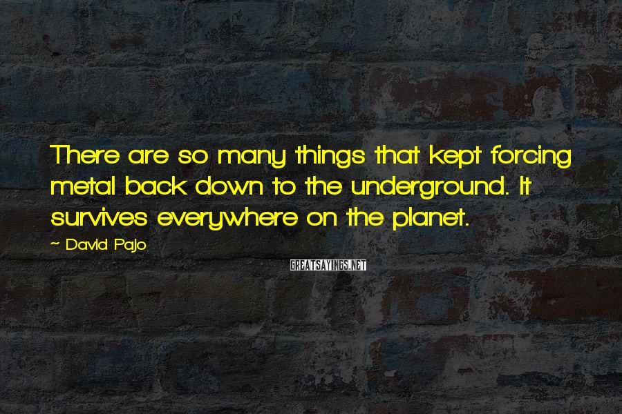 David Pajo Sayings: There are so many things that kept forcing metal back down to the underground. It