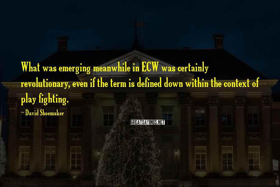 David Shoemaker Sayings: What was emerging meanwhile in ECW was certainly revolutionary, even if the term is defined