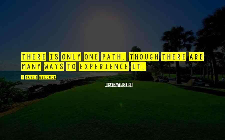 David Wilcock Sayings: There is only one path, though there are many ways to experience it.