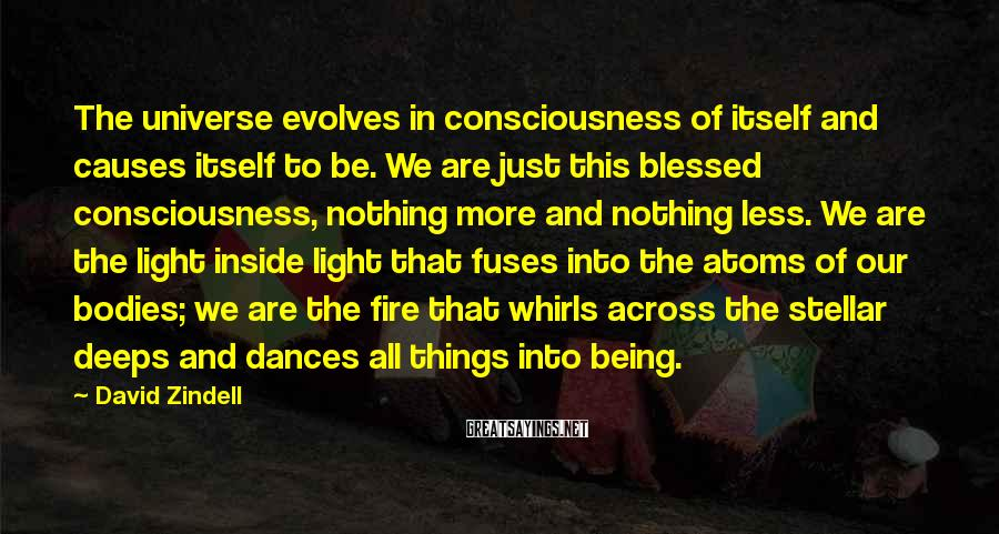 David Zindell Sayings: The universe evolves in consciousness of itself and causes itself to be. We are just