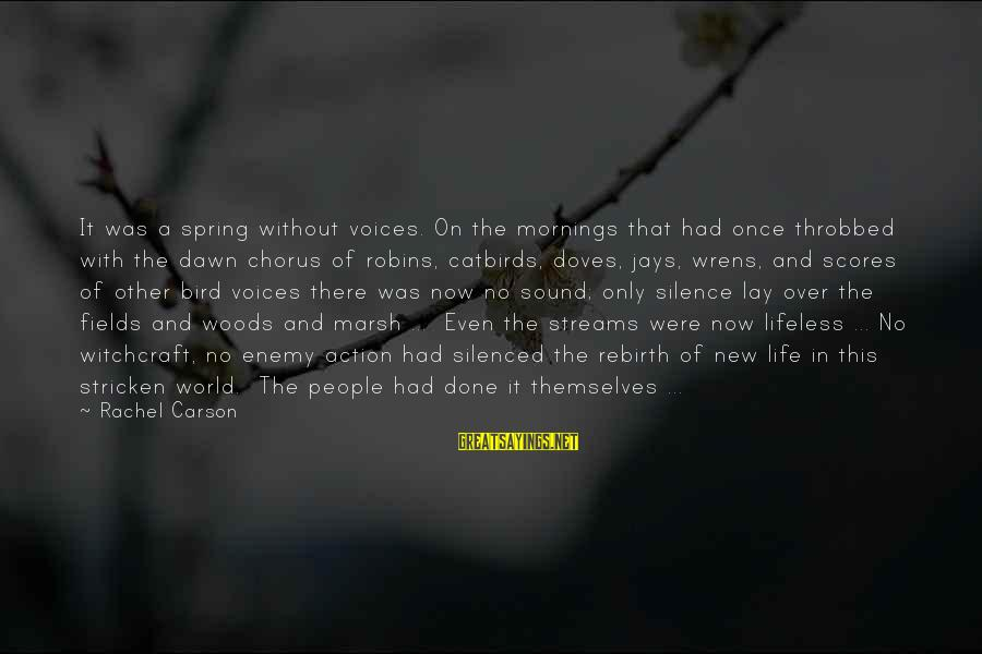 Dawn Chorus Sayings By Rachel Carson: It was a spring without voices. On the mornings that had once throbbed with the
