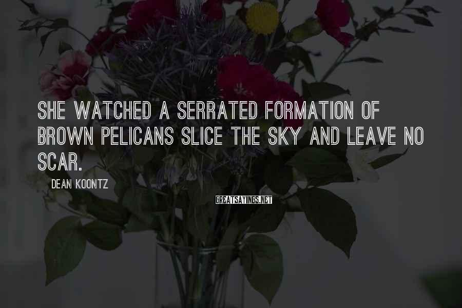 Dean Koontz Sayings: She watched a serrated formation of brown pelicans slice the sky and leave no scar.
