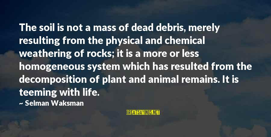 Decomposition Sayings By Selman Waksman: The soil is not a mass of dead debris, merely resulting from the physical and