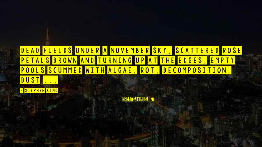 Decomposition Sayings By Stephen King: Dead fields under a November sky, scattered rose petals brown and turning up at the