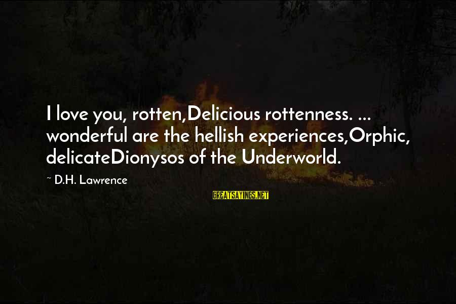 Delicious Love Sayings By D.H. Lawrence: I love you, rotten,Delicious rottenness. ... wonderful are the hellish experiences,Orphic, delicateDionysos of the Underworld.