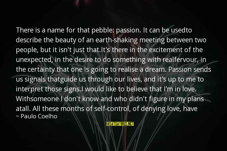 Denying Self Sayings By Paulo Coelho: There is a name for that pebble: passion. It can be usedto describe the beauty