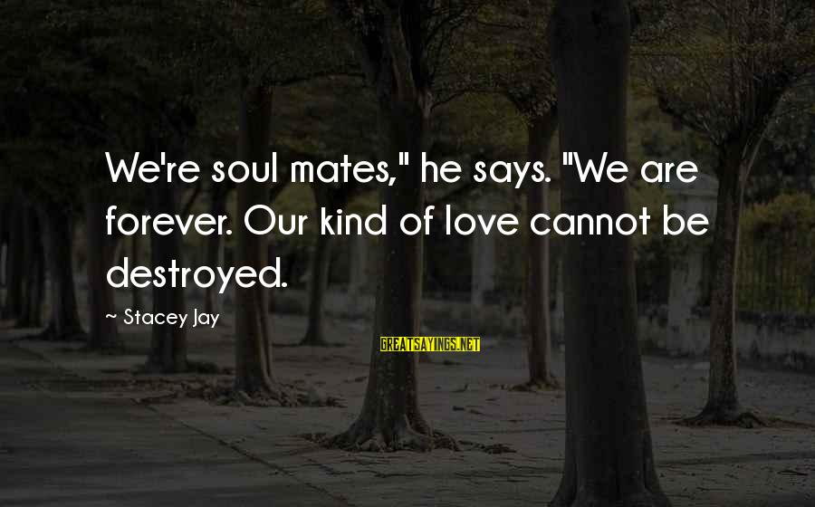 "Destroyed Love Sayings By Stacey Jay: We're soul mates,"" he says. ""We are forever. Our kind of love cannot be destroyed."