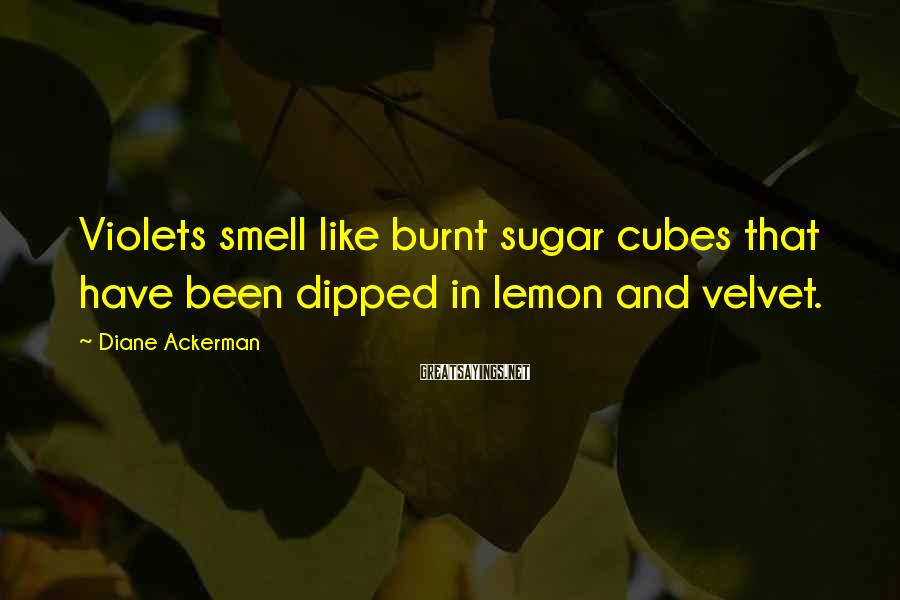 Diane Ackerman Sayings: Violets smell like burnt sugar cubes that have been dipped in lemon and velvet.