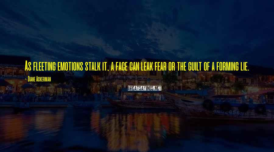 Diane Ackerman Sayings: As fleeting emotions stalk it, a face can leak fear or the guilt of a