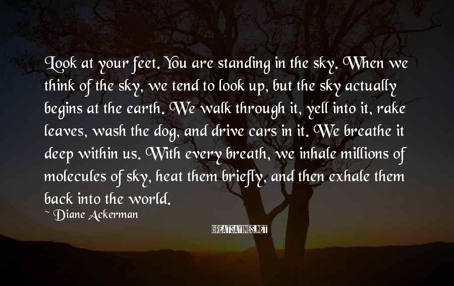 Diane Ackerman Sayings: Look at your feet. You are standing in the sky. When we think of the