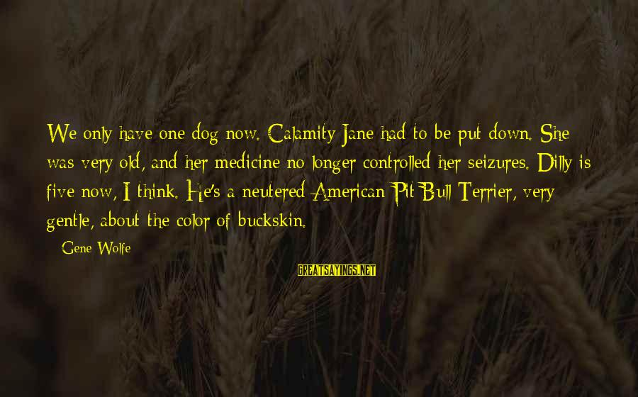 Dilly Sayings By Gene Wolfe: We only have one dog now. Calamity Jane had to be put down. She was