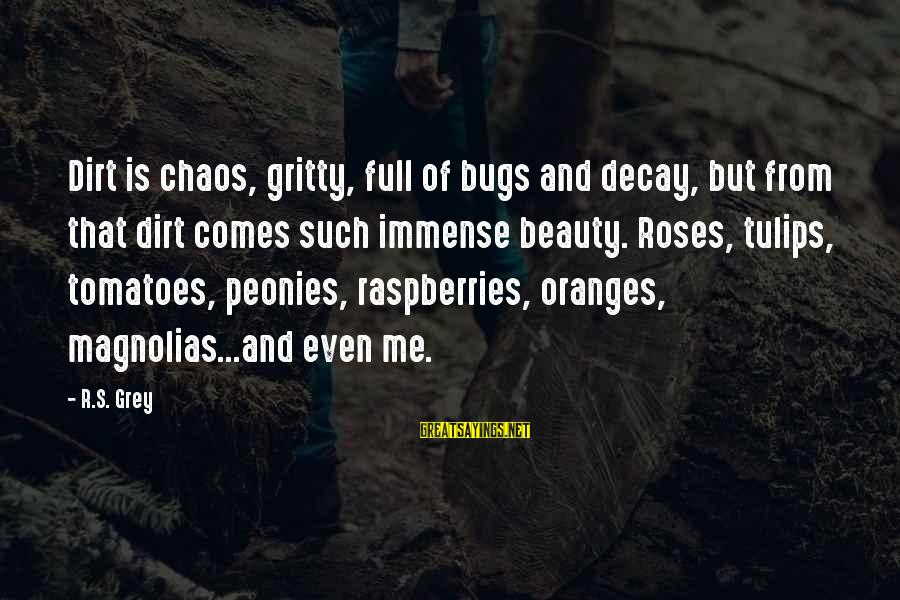 Dirt's Sayings By R.S. Grey: Dirt is chaos, gritty, full of bugs and decay, but from that dirt comes such