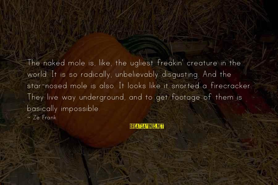 Disgusting World Sayings By Ze Frank: The naked mole is, like, the ugliest freakin' creature in the world. It is so