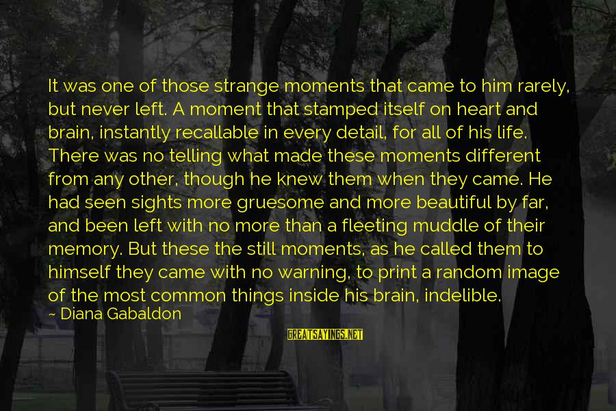 Dissimilars Sayings By Diana Gabaldon: It was one of those strange moments that came to him rarely, but never left.