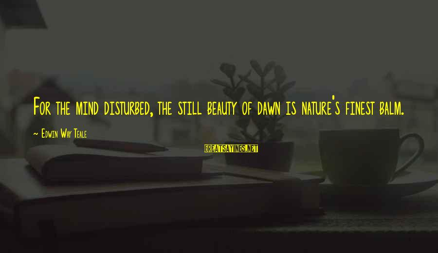 Disturbed Mind Sayings By Edwin Way Teale: For the mind disturbed, the still beauty of dawn is nature's finest balm.