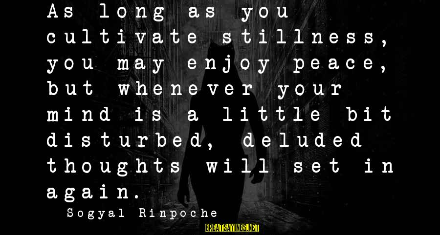 Disturbed Mind Sayings By Sogyal Rinpoche: As long as you cultivate stillness, you may enjoy peace, but whenever your mind is
