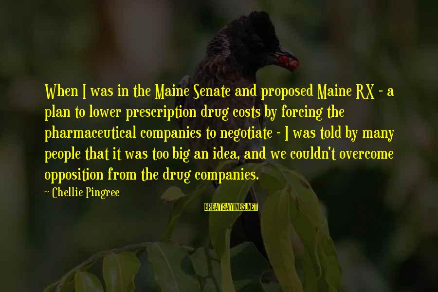 Dmitry Sholokhov Sayings By Chellie Pingree: When I was in the Maine Senate and proposed Maine RX - a plan to