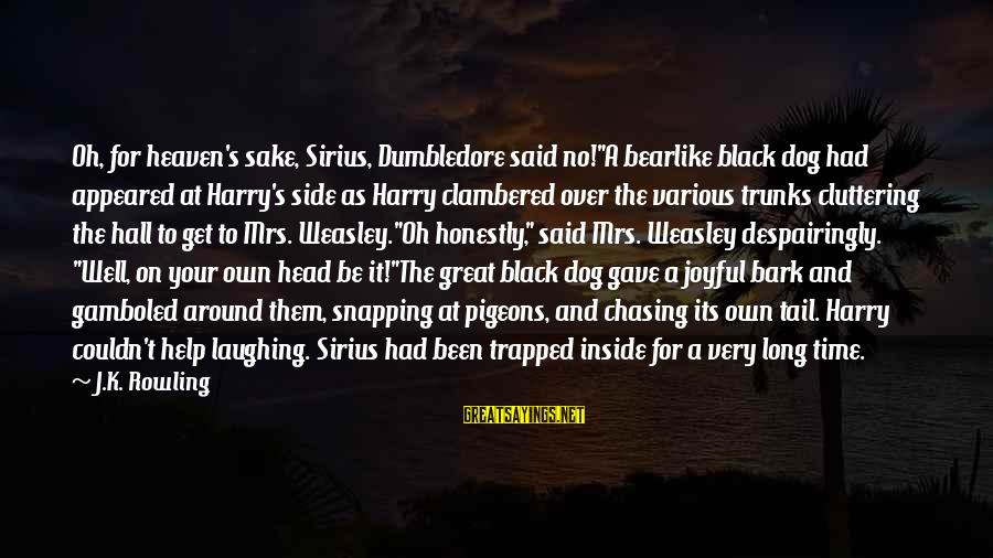 """Dogs And Heaven Sayings By J.K. Rowling: Oh, for heaven's sake, Sirius, Dumbledore said no!""""A bearlike black dog had appeared at Harry's"""
