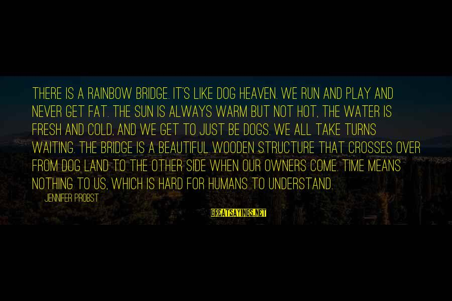 Dogs And Heaven Sayings By Jennifer Probst: There is a Rainbow Bridge. It's like dog heaven. We run and play and never