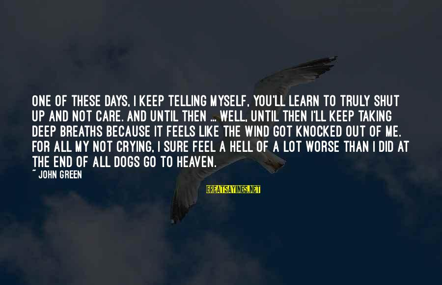 Dogs And Heaven Sayings By John Green: One of these days, I keep telling myself, you'll learn to truly shut up and